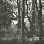 Kyrkparken (20)