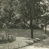 Kyrkparken (07)