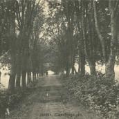 Claesborgsvägen