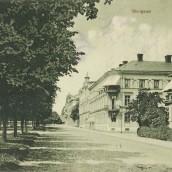 Skolgatan (21)