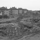 Alströmerg [1960]
