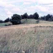 Nyströms kullar (2)