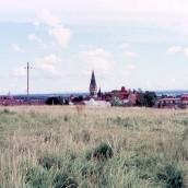 Nyströms kullar (3)