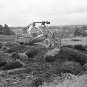 Nyströms kullar [1960] (1)
