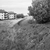 Nyströms kullar [1960] (3)