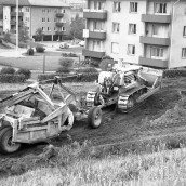 Nyströms kullar [1960] (5)
