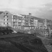 Stenvägen [1956] (1)