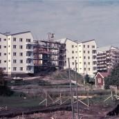 Stenvägen [1957] (5)