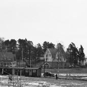 Tallbacken [1957]