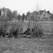Vasaskolan [1959] (7)
