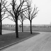 Vasaskolan [1959] (13)