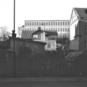 Fredsgatan [1962] (1)