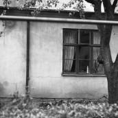 St Sigfridsgatan 5 [1960] (3)