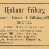 Friberg - 1903
