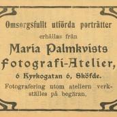 Palmkvist - 1903