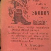 Skodon - 1903