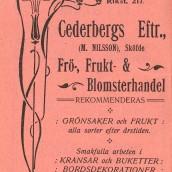 Cederbergs - 1914