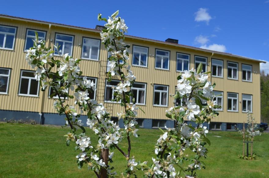 Kalvs skolhus - vandrarhem, kursgård & lägerskola i södra Västergörland på gränsen till Halland och Småland.