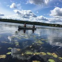 Paddling i Kalvsjön