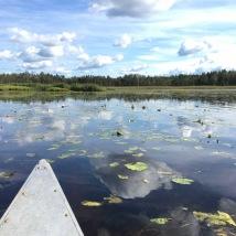 Bada, fiska eller paddla i sjön