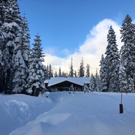 Wuksachi Logde, Sequoia Nat´l Park
