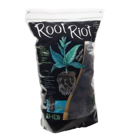 Root Riot 50st