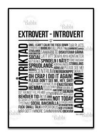 Extrovert - Introvert