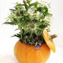 Blomsterpumpa nr 4