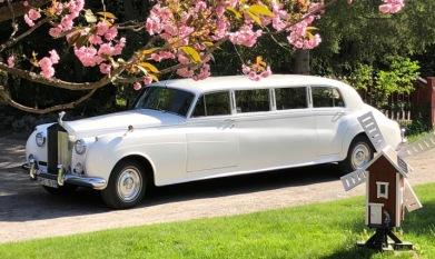 RR_Limousine