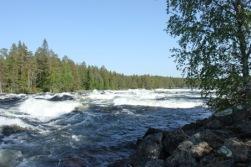 Bild ifrån Vindelälven. Copyright och fotograf Visitumea.