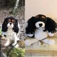 Virkad kopia av din hund - Virkad hund