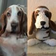 Virkad kopia av din hund