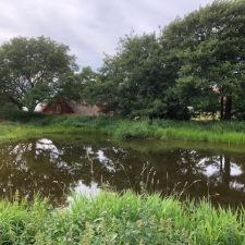 Dammen i juli 2020. Foto Hasse Hansson