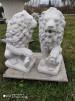 Lejon med sköld vänster eller höger - Lejonpar med sköld åt Höger vänster