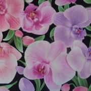 Bomullstyg svart/rosa-lila orkide (Orchid)