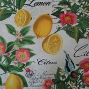 Bomullstyg med citroner