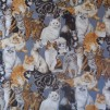 Bomullstyg katter (Cats Corner)
