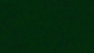 Bomullstyg Dimples mörkgrön (Makower)