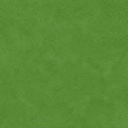 Bomullstyg Dimples grön (Makower)