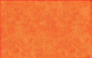 Bomullstyg Dimples Carrot (Makower)