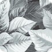 Bomullstyg grå julstjärna (Holiday Flourish)