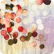 Bomullstyg Nature´s Pace autumn