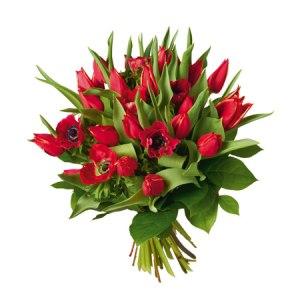 Kärlek - Tulpanbukett nterflora1201041  Vår nya bukett Kärlek innehåller tulpaner och anemoner i romantiskt rött. Pris: 345:-