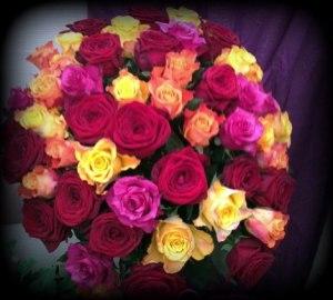 blandade rosor -alltid vackert!