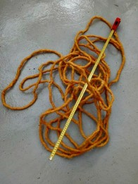 rep nordingrådagen