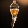 ANOVA Gold Sperm