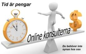 Kontakta Online konsulterna