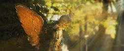 Bilden föreställer en staty på en ängel