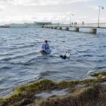 Performance Water is instinct, Andreas M. Larsson (aug 2017) Photo: Noak Haugen Konrad