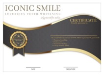 salon iconic smile